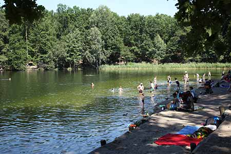 Krumme Lanke Lake / Green Berlin